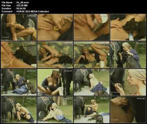 All Screen Shots Horse Sex Videos