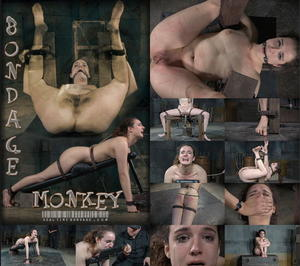 REAL TIME BONDAGE: May 16, 2015: Bondage Monkey Part 3 | Endza